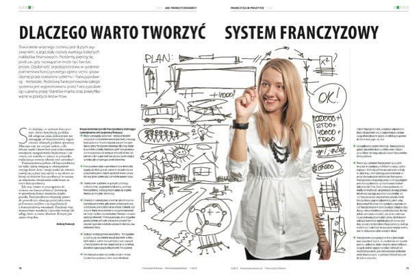 article_dlaczego_warto_tworzyc_system
